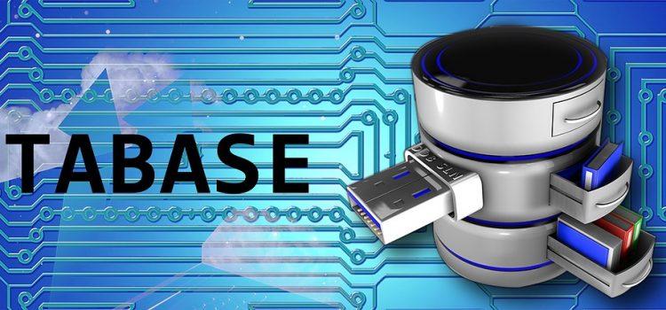L'importance des prestations de sauvegarde et restauration de données pour l'entreprise
